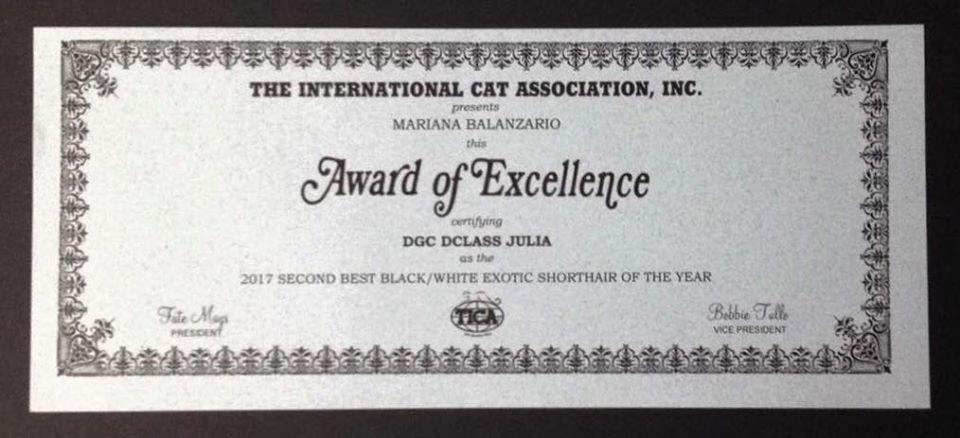 DGC Dclass Julia, premio de excelencia