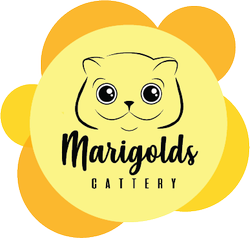 Marigolds Cattery, logotipo