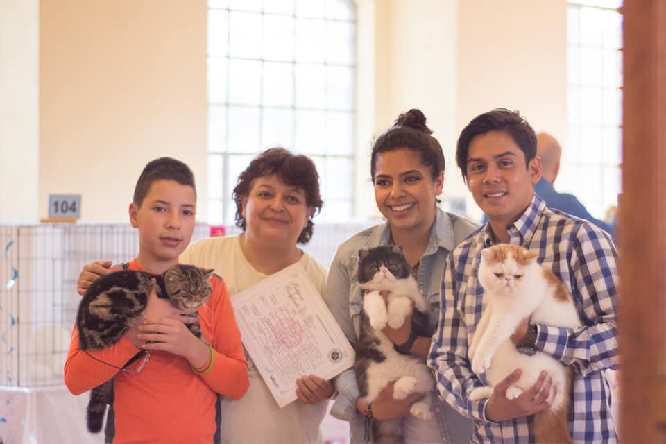 TICA febrero 2019, México, CDMX, participantes de Marigolds Cattery
