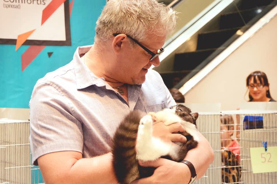 TICA 2019, Costa Rica, Cartago, juez observando a un gatito de Marigolds Cattery