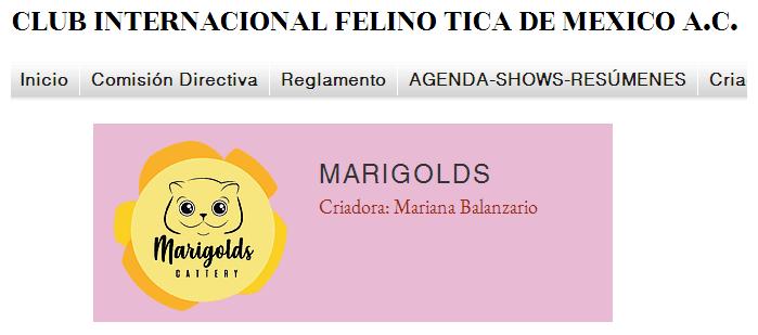Marigolds Cattery, registrado ante TICA de México
