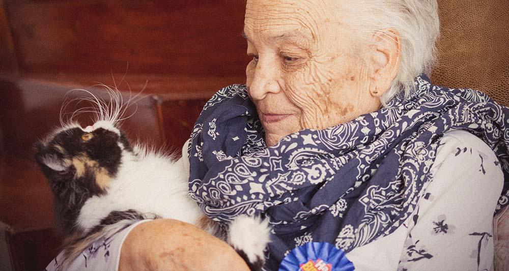 Persona mayor con gato persa